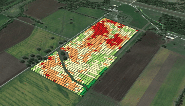 crop quality mapping with drone